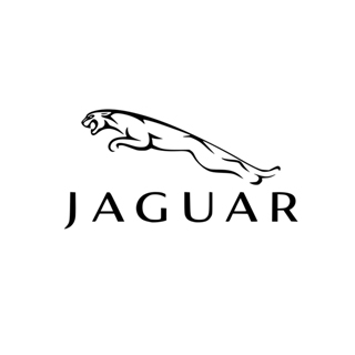 Jaguar Ireland